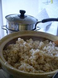 B rice
