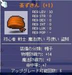 20060210224600.jpg