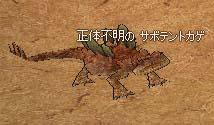 2006_08_02_005.jpg