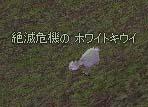 2006_08_09_001.jpg