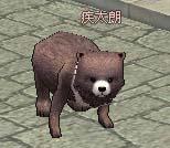 2006_11_11_011.jpg