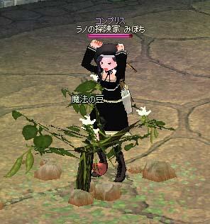 2006_11_30_001.jpg