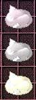 白系ピン猫