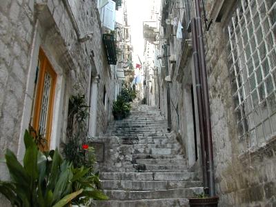 ドブの階段