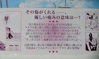 tabi_obi.jpg