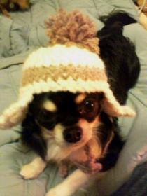 まめ帽子2