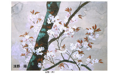 山桜(木) web