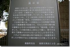 IMGP0293