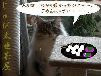 茶店1。。。もじ1Hukidasi。ごめんにゃさい