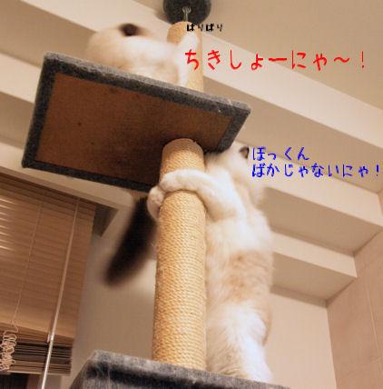 くやしぃ~!