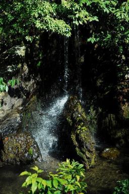 金閣寺の瀧