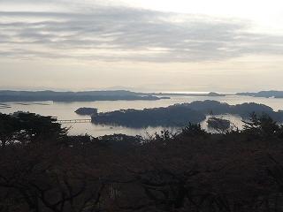 早朝「西行戻しの松」4月13日