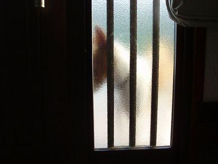 ドアを引っ掻かないでよ。