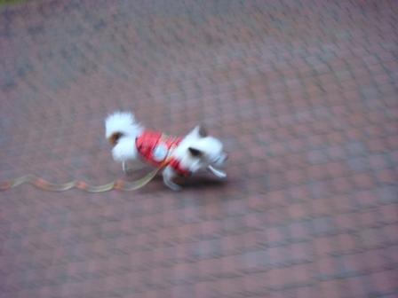 20080120モモひとり散歩3
