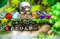 Maple2078.jpg