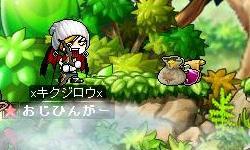 Maple2083.jpg