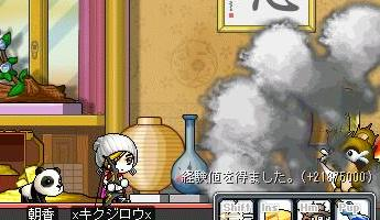 Maple2182.jpg
