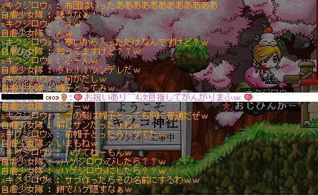 Maple2448.jpg