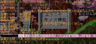 Maple2453.jpg