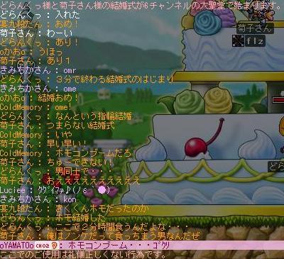 Maple2862.jpg
