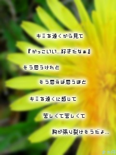 image814099.jpg