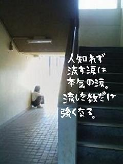 middle_1184594453.jpg