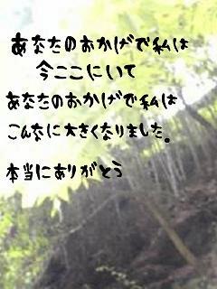 middle_1188102278.jpg