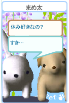 20070513200408.png