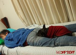 ココで寝るの。
