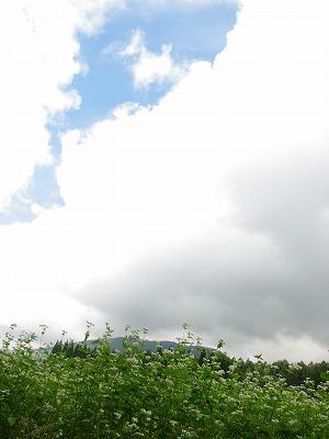 20060910130305.jpg