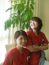 uchinotaharazako.jpg