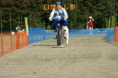20071105223131.jpg
