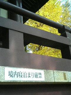 20061216155906.jpg