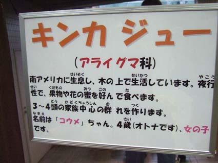 koume_9.jpg