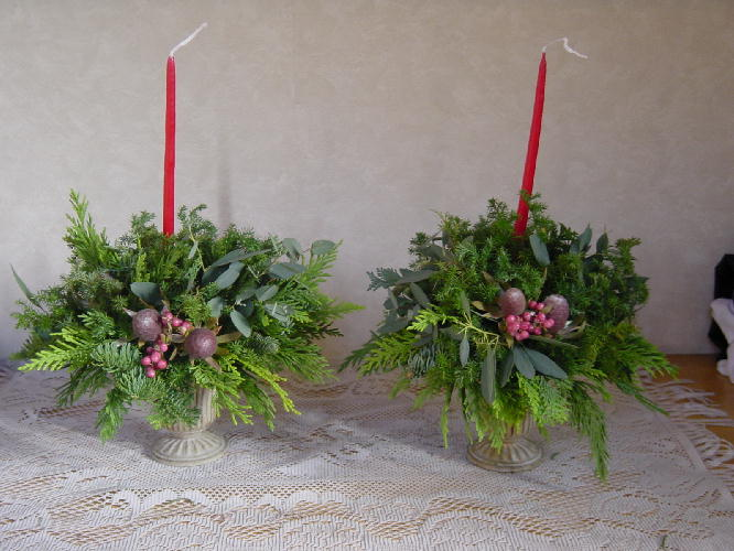 クリスマスローズ3