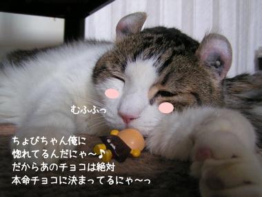 49_20080213195435.jpg