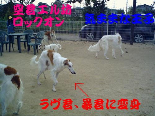 20061019214934.jpg