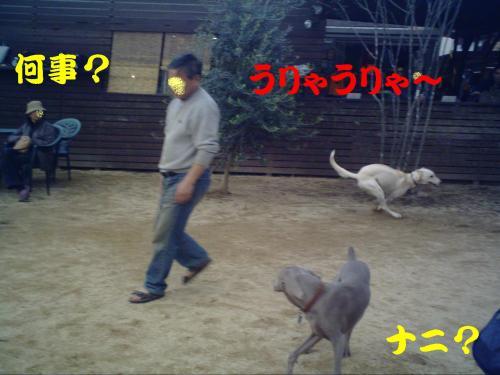 20061029161100.jpg