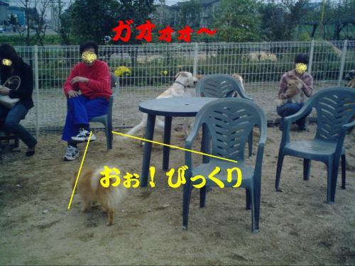 20061029222031.jpg