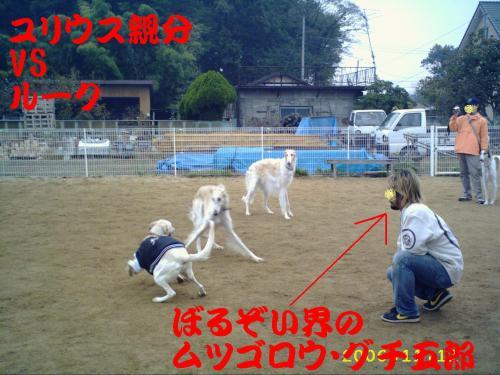 20061114220154.jpg