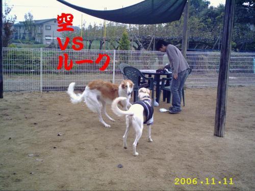 20061118224533.jpg