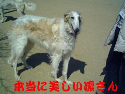20070319213338.jpg
