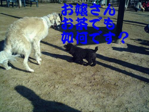 20070319214644.jpg