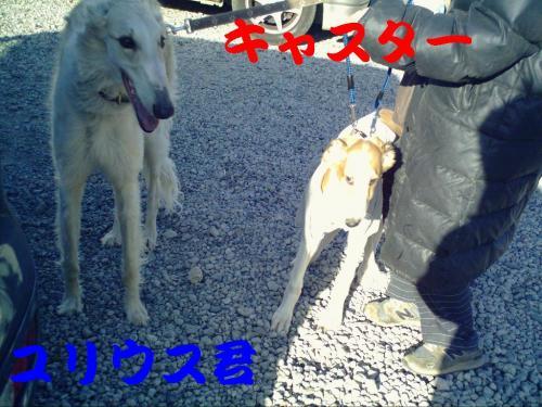 20070323221435.jpg