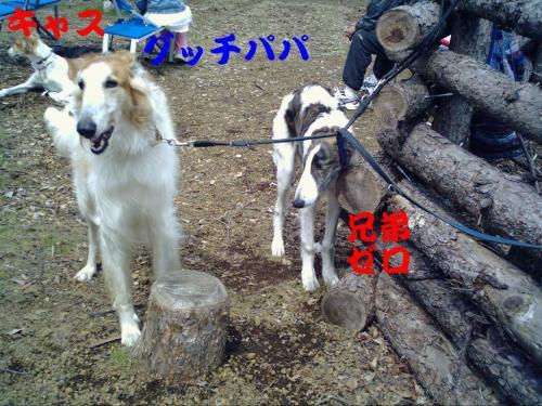 20070417220831.jpg
