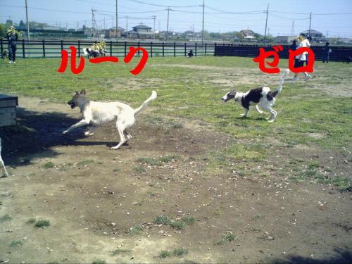 20070505224211.jpg