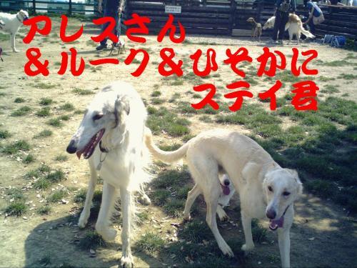 20070505230754.jpg
