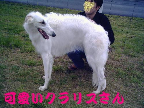 20070521144036.jpg