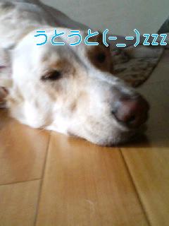 20070915223529.jpg