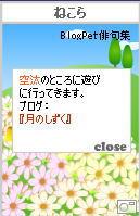 3-3-bp1.jpg